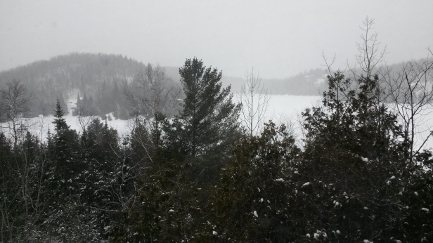 A moody Quebec morning: The view outside my bedroom window today. (Photo: Jillian Page)