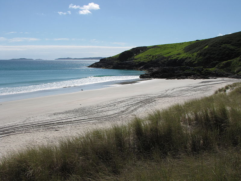 One of many New Zealand beaches. (Wikimedia Commons)