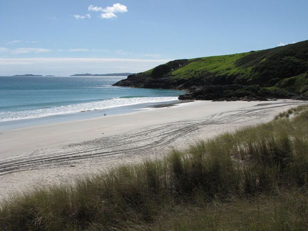 One of many New Zealand beaches. (Wikimedia Commons)