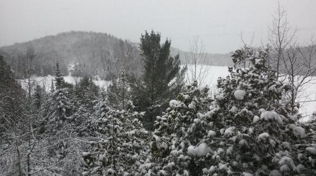 The view outside my window on Sunday, Jan. 3, 2016. (Photo: Jillian Page)