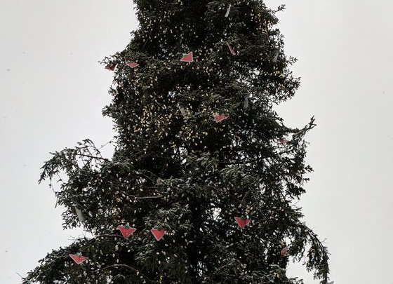 """Canadian Tire advertisements are used as """"decorations"""" on Montreal's Christmas tree."""